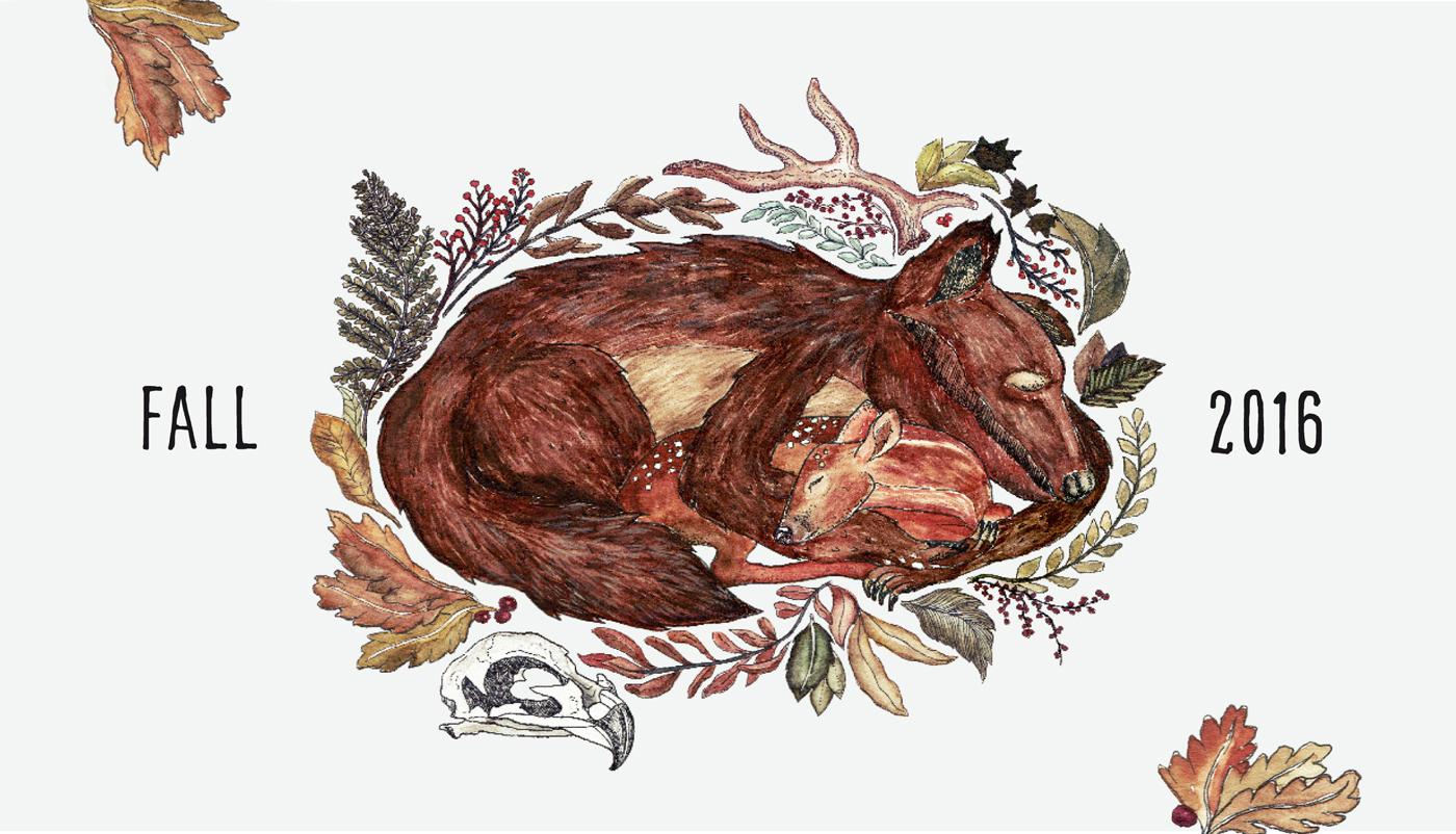 Bear & fawn – Herbstillustration