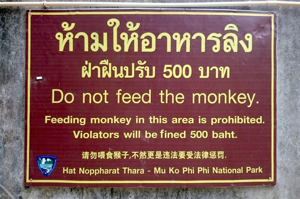 monkey_bispinck