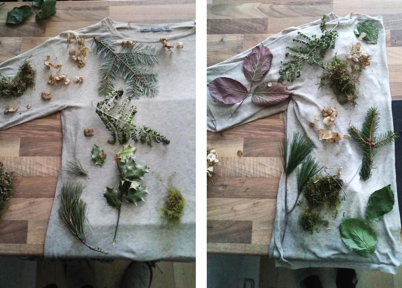 Natürliches Färben von Textilien mit Pflanzen
