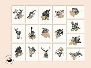 Postkartenset | Waldtiere