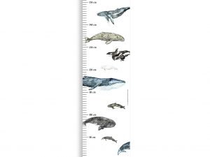 """Messleiste für Kinder """"Wale"""""""
