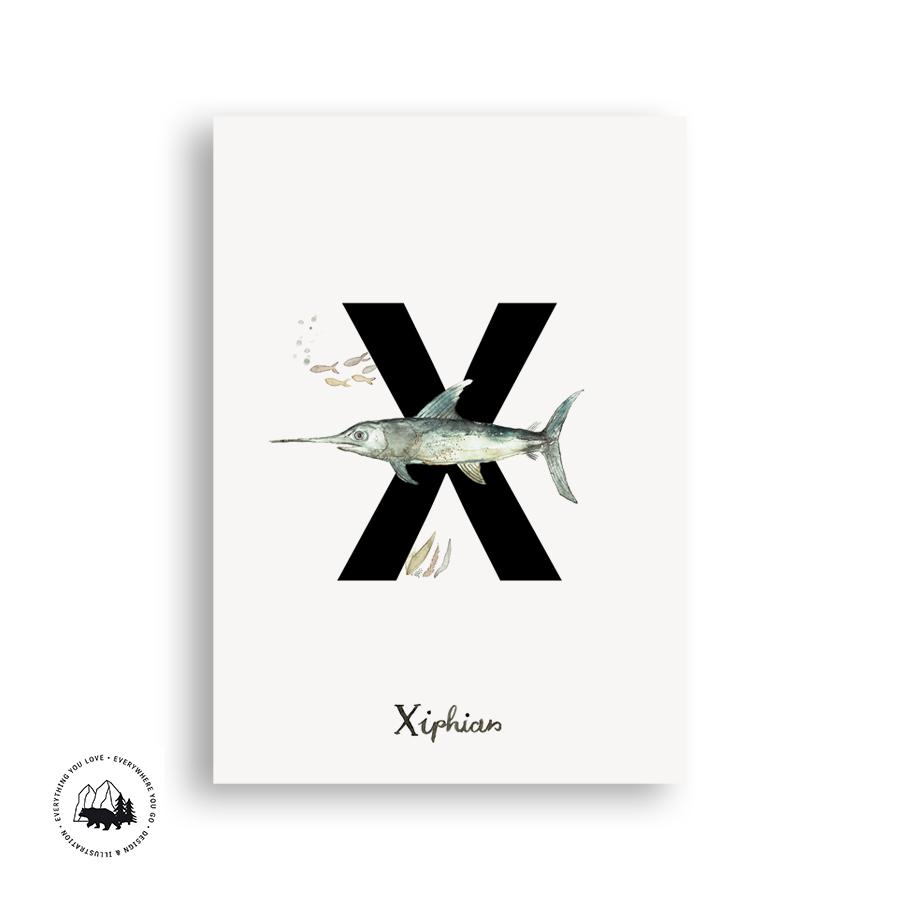 Buchstabenpostkarten_Ansicht_X_klein