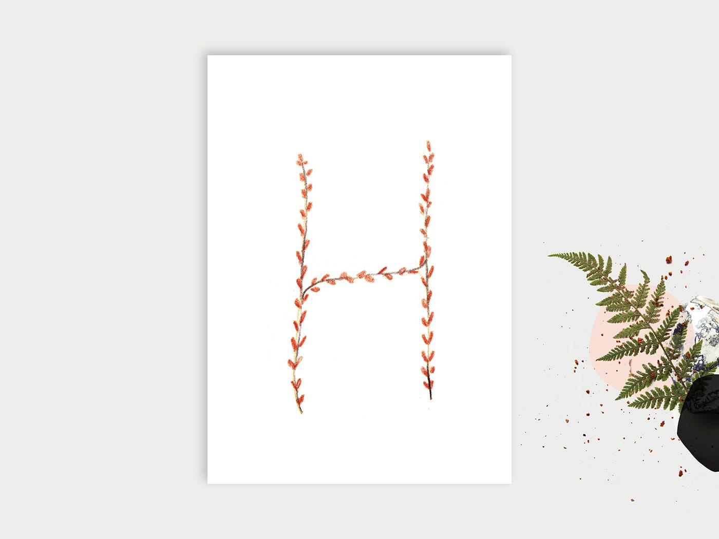 Wald-ABC_H