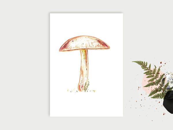 Wald ABC   Postkarte   A