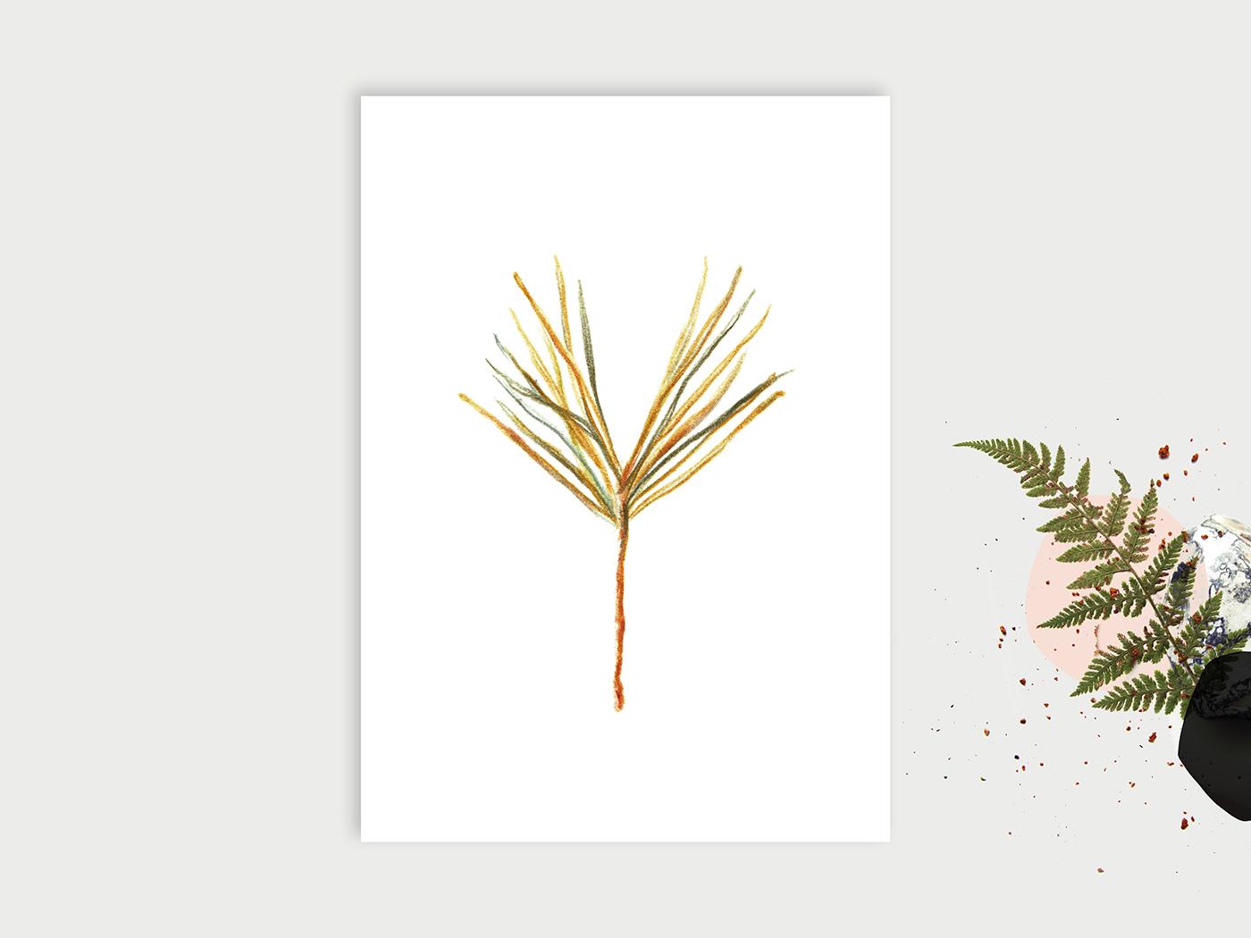 Wald-ABC_Y